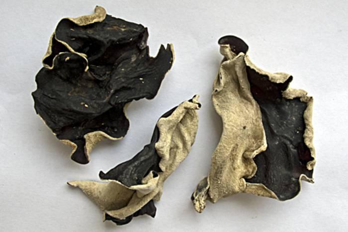 black fungus pilze getrocknet zubereitung